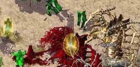 面对特殊传奇暗黑版本里戒指战士该如何选择